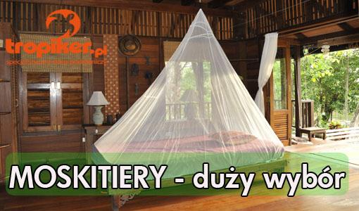 2 moskitiery